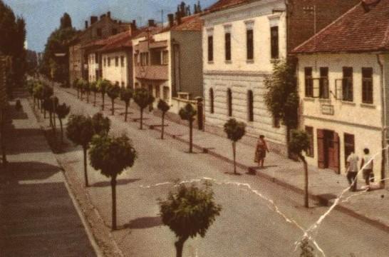 glavna-ulica-samac-1.jpg