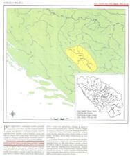 FIRST MENTIONS OF SERBS IN BOSNIA