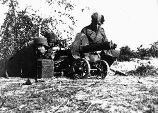 Последња битка у Европи – операција Посавина