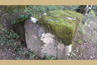 Некропола у селу Горшић поље или Хранчићи код Горажда
