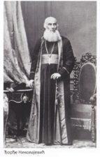 МИТРОПОЛИТ ЂОРЂЕ НИКОЛАЈЕВИЋ (1807-1896)